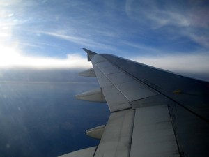 Wing_of_plane_1